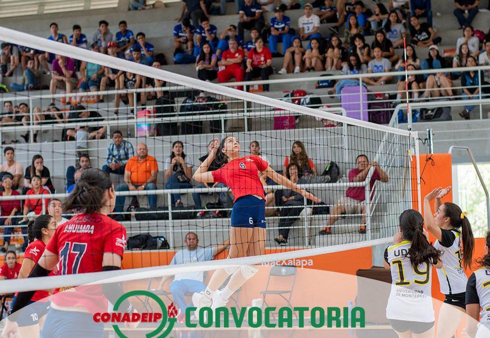 Convocatoria al Campeonato Nacional de Voleibol de Sala 1a Fuerza